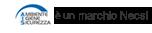 Logo A.I.S.
